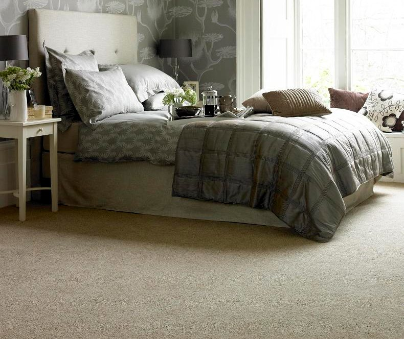 10 Fun and Interesting Facts about Carpet!