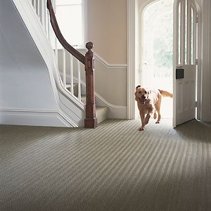 New carpet for your hall and staircase really can help to sell your home!